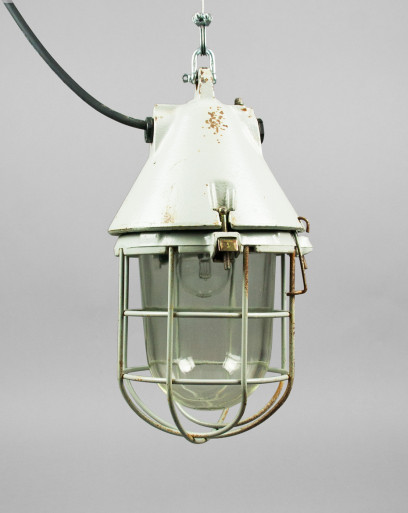 Bearded Dragon | Conical Well-glass Pendant Light With Removable Cage