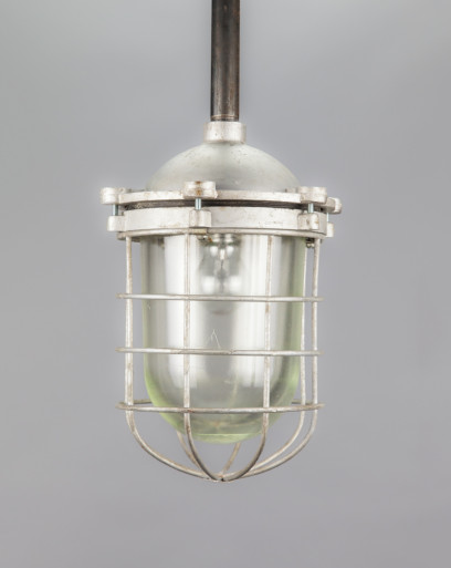 Frilled Lizard   Soviet Splash Proof Light Fixture With Caged Dome