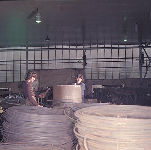 Barracuda   Steel Plated Pendant Light