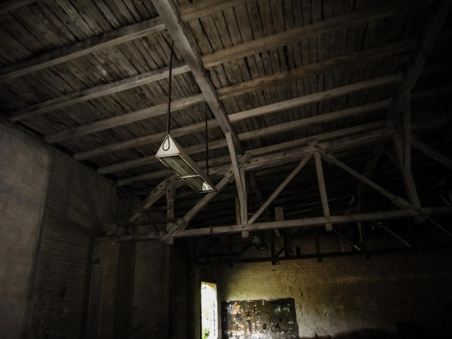 Fin Whale - Industrial Fluorescent Light