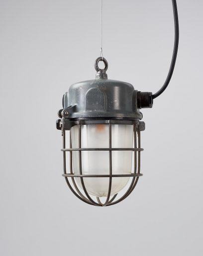Industrial-Cage-Light-Marine-Iguana-Off