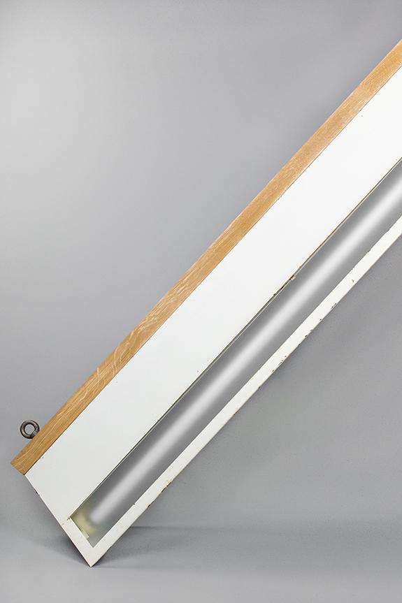 Pendant-White-Dolphin-Fluorescent-Off